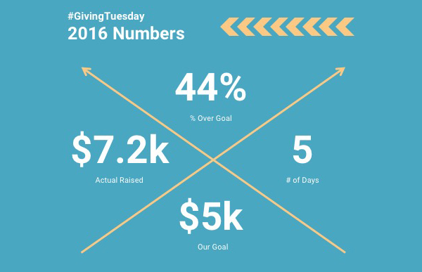 #GivingTuesday 2016 Results